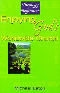 Theology For Beginners: Enjoying Gods Worldwide Church