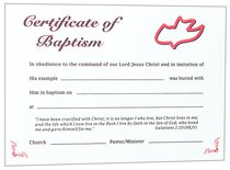 Certificate Adult Baptism: Red Dove