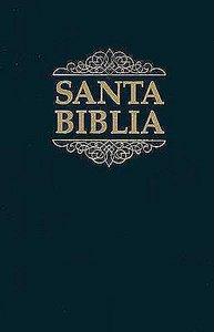 Spanish Bible Reference Rvr Spabrv053
