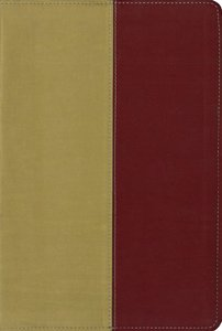 Kjv/Amplified Parallel Bible Italian Gold/Rich Red Duo-Tone
