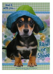 Poster Large: God is With You Rain Or Shine