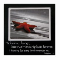 Magnetic Picture Frame: Star Fish