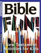 Bible Fun (Ages 6-10, Reproducible) (Warner Press Colouring & Activity Books Series)