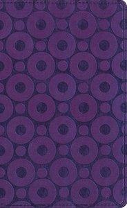 Amplified Compact Purple/Metallic