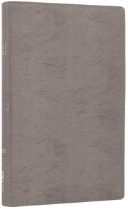 NIV Thinline Bible Metallic Silver (Red Letter Edition)