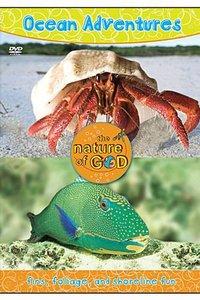 Ocean Adventures (Volume 2) (Nature Of God Series)