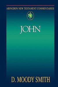 John (Abingdon New Testament Commentaries Series)