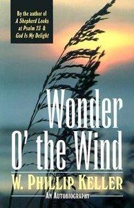 Wonder O the Wind