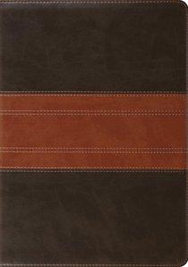 ESV Study Bible Trutone Forest/Tan Trail Design (Black Letter Edition)