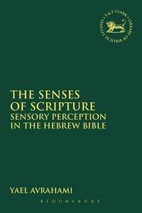 The Senses of Scripture (Library Of Hebrew Bible/old Testament Studies Series)