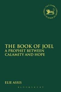 The Book of Joel (Library Of Hebrew Bible/old Testament Studies Series)