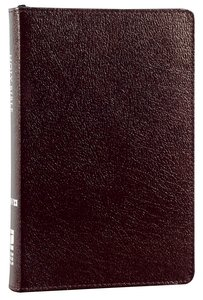 NIV Compact Thinline Bible Zippered Burgundy (Red Letter Edition)