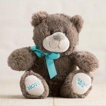 Hug For Your Heart Bear: Hope Isaiah 40:31, Dark Gray/Blue Ribbon
