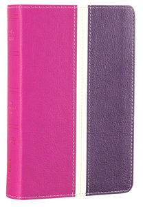 Amplified Holy Bible Compact Dark Orchid/Deep Plum (Black Letter Edition)