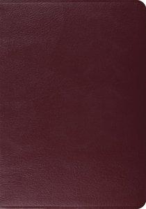 ESV Study Bible Burgundy