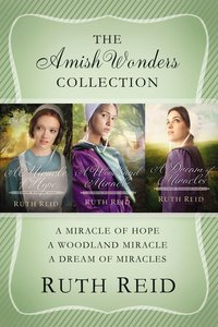 The 3in1 Amish Wonders Collection (The Amish Wonders Series)