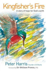 Kingfishers Fire