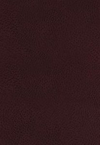 KJV Study Bible Bonded Leather Burgundy Full-Color Edition