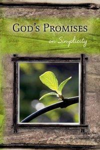 Gods Promises: On Simplicity