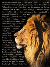 Wall Chart: Lion of Judah: Names of Christ (Laminated)