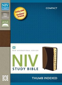 NIV Study Compact Indexed Bible Tan/Burgundy (Red Letter Edition)