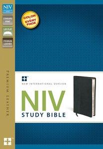 NIV Study Bible Regular Black Premium Leather (Red Letter Edition)