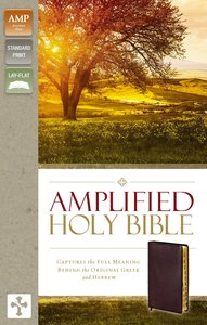 Amplified Holy Bible Indexed Burgundy