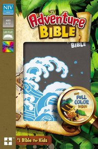 NIV Adventure Bible Gray Full Color Interior