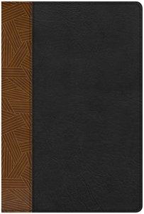 CSB Rainbow Study Bible Black/Tan Indexed