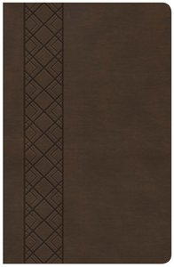 CSB Ultrathin Reference Bible Value Edition Brown
