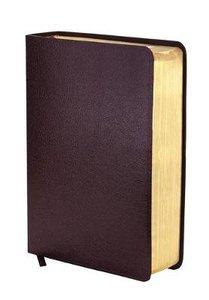 NIV Study Bible Burgundy