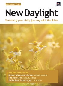 New Daylight Deluxe 2017 #02: May-Aug (Large Print)