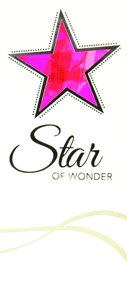 Christmas Boxed Cards Star, Star of Wonder