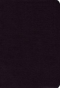 NIV Study Bible Regular Black (Red Letter Edition)