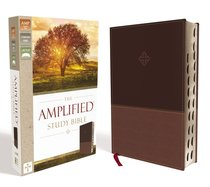Amplified Study Bible Brown Indexed (Black Letter Edition)