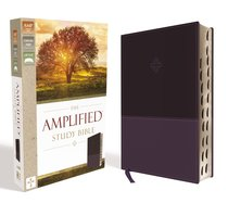 Amplified Study Bible Purple Indexed