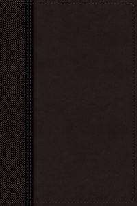 NIV Thinline Reference Bible Large Print Gray (Red Letter Edition)