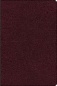 NIV Biblical Theology Study Bible Burgundy Indexed (Black Letter Edition)