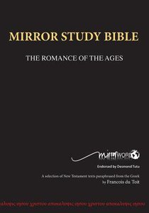Mirror Bible Wide Margin Blue Large Print