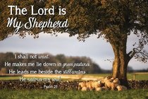 Poster Small: The Lord is My Shepherd