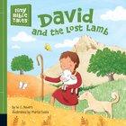 David and the Lost Lamb (Tiny Bible Tales Series)